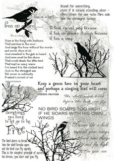 Birds & Words Transparency - Click Image to Close