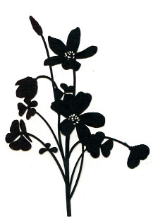 Bunch of Flowers BLACK - Click Image to Close