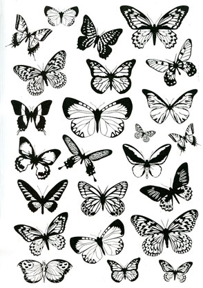 Butterflies transparency - Click Image to Close