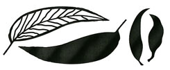 Gum Leaves stamp - Click Image to Close