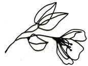 Wire Flower silhouette